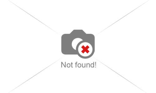 Výlety na sněžnicích